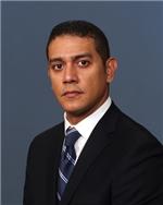 Ramy P. Elmasri