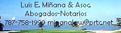 Firm Logo for Luis E. Minana Associates Abogados-Notarios